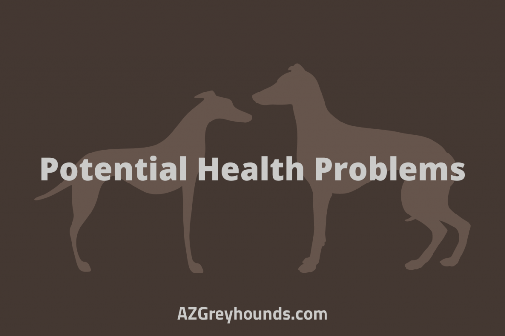 Potential Health Problems